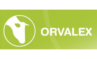 Orvalex